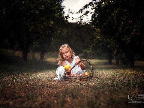 dziecięca fotografia piła
