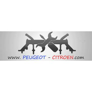 Peugeot-CitroenPila